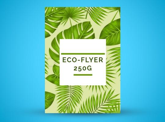Flyer éco papier 250g
